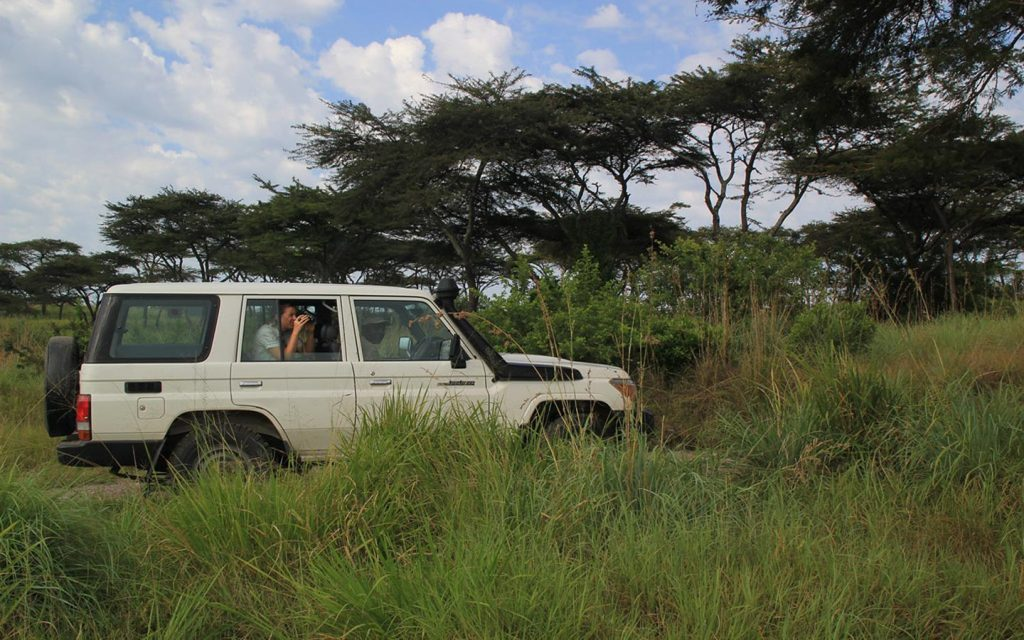 Safari Cars or Cruisers for hire
