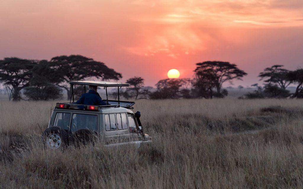 Wildlife viewing game drives in uganda-Game drives in Uganda