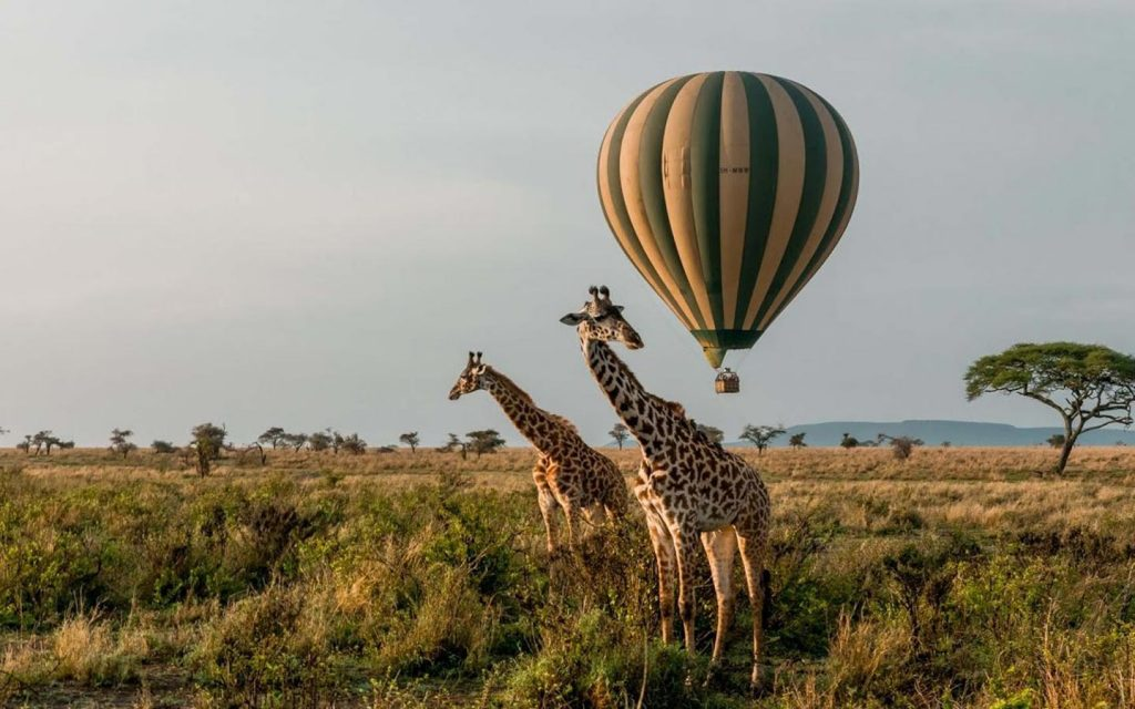 balloon safaris uganda - Hot air balloon - murchison falls national park