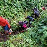 safaris in uganda, gorilla trekking tours, mountain gorilla tours, gorilla trek uganda, rwanda gorilla tour, gorilla tracking uganda, safaris africa, gorilla camp, buhoma, murchison national park