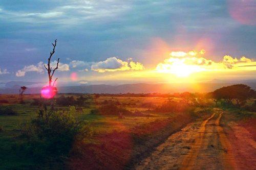 Ultimate Uganda Safari - sunnset in murchison falls national park - 3 days murchison falls adventure
